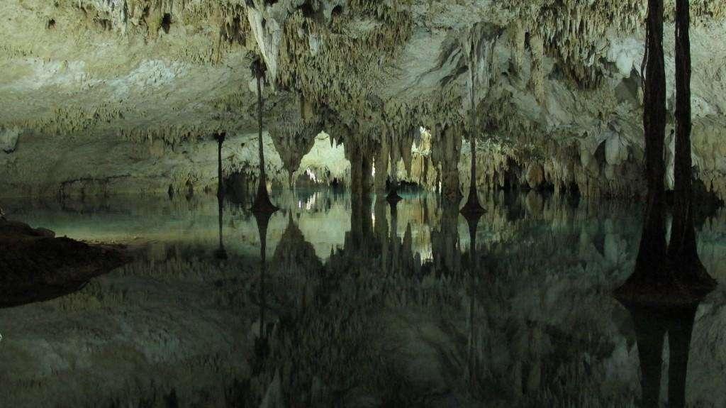 Sac Actun - Cenote Pet Cemetery
