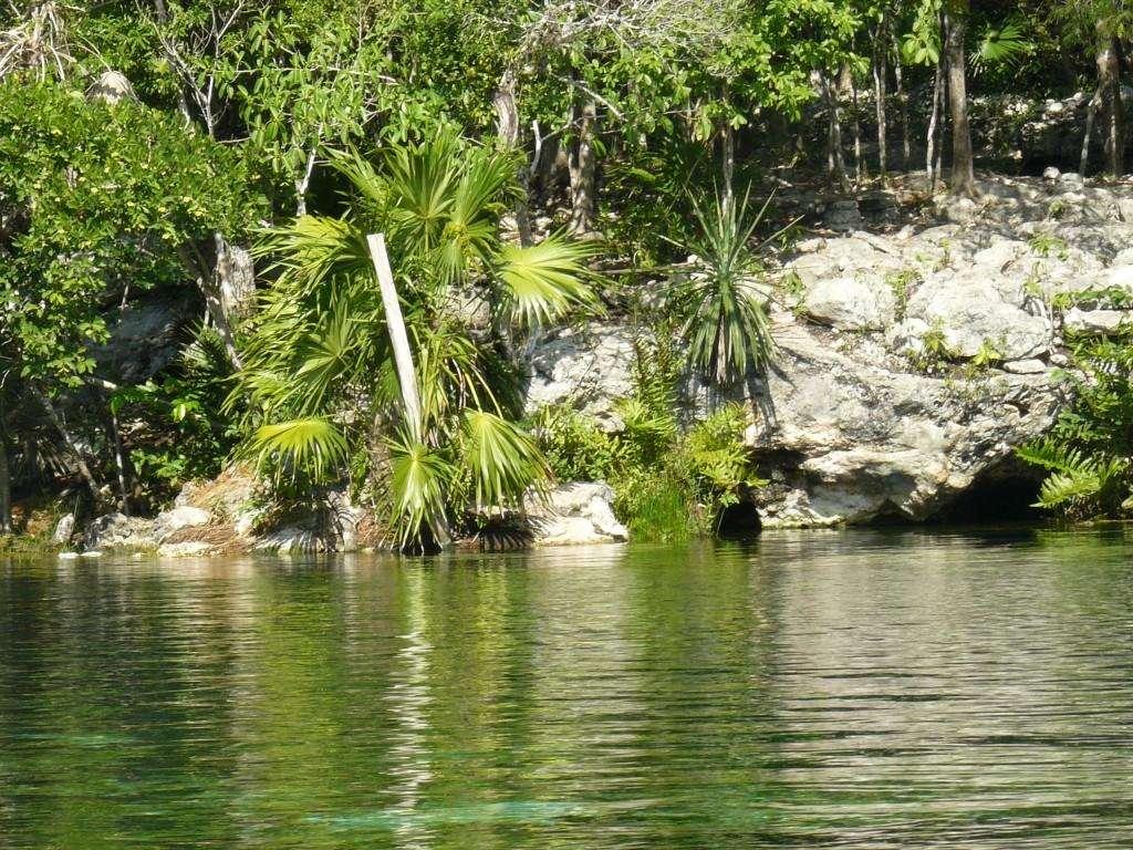 Cenote Ponderosa - Le Jardin d'Eden