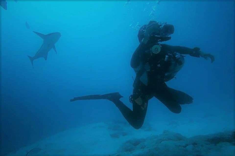 Deep Dark Diving: Cursos de buceo