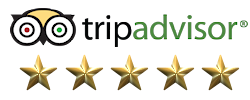 5 star rated in trip advisor